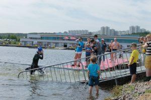 Кубок Чемпионов (Москва) - Сеть бассейнов клуба «Мэвис-1» обучение плаванию взрослых