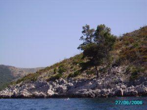 ХОРВАТИЯ 2006 ГОД - Сеть бассейнов клуба «Мэвис-1» обучение плаванию взрослых